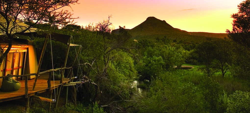 Tented Camps and under the stars